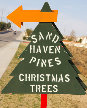 Sand Haven Pines Parking